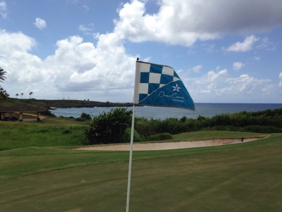 Ocean Course at Hokuala : photo6.jpg