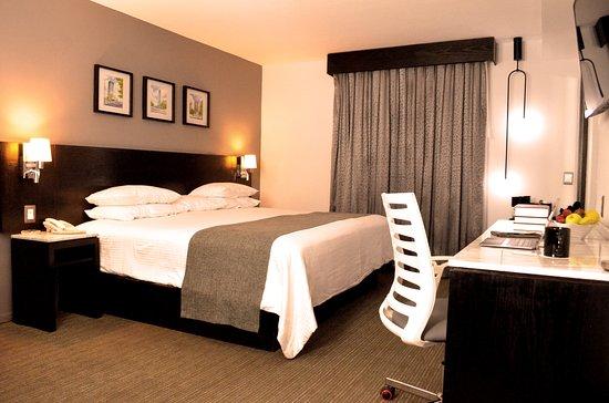 Foto de Laila Hotel CDMX