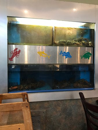 Chinese Restaurant Tamarac Fl