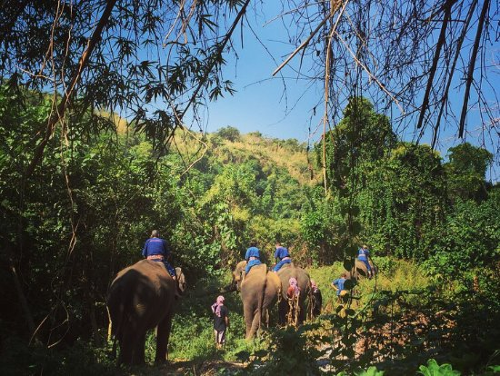 Sai Yok, Thái Lan: @elephants' home & nature