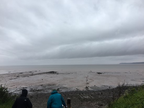 Joggins Fossil Cliffs Centre: photo2.jpg