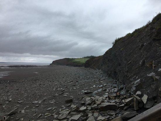 Joggins Fossil Cliffs Centre: photo3.jpg