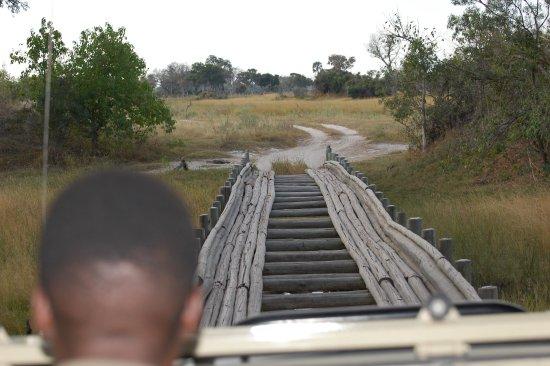 Pom Pom Camp: De brug vanuit het kamp tijdens de safari