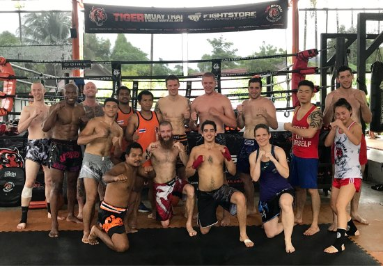 Tiger Muay Thai - Day Classes: photo4.jpg