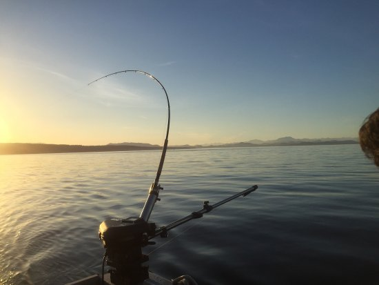 Campbell River Fishing Guide: photo2.jpg