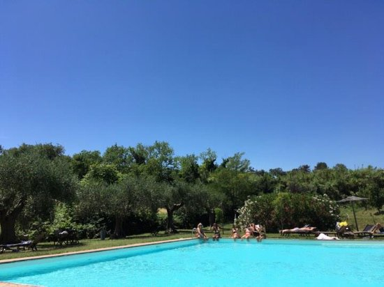Villa Giulia Bild