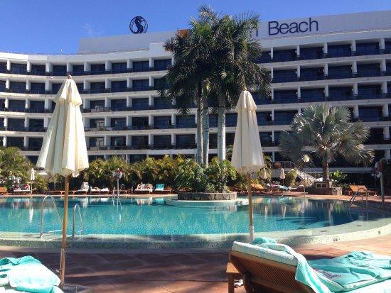 Seaside Palm Beach Foto