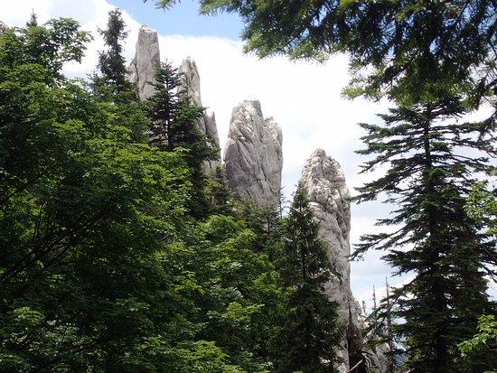 Primorje-Gorski Kotars län, Kroatien: Bijele stijene (White Rocks), Gorski kotar, Croatia, hiking tour