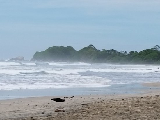 Nosara Beach (Playa Guiones): 20170703_092944_large.jpg