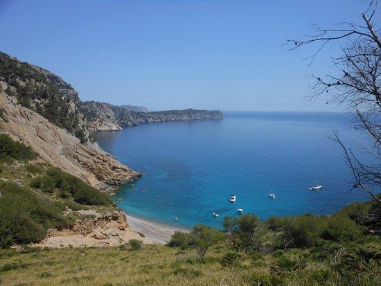Playa Coll Baix - Photo de Playa Coll Baix, Alcudia - TripAdvisor