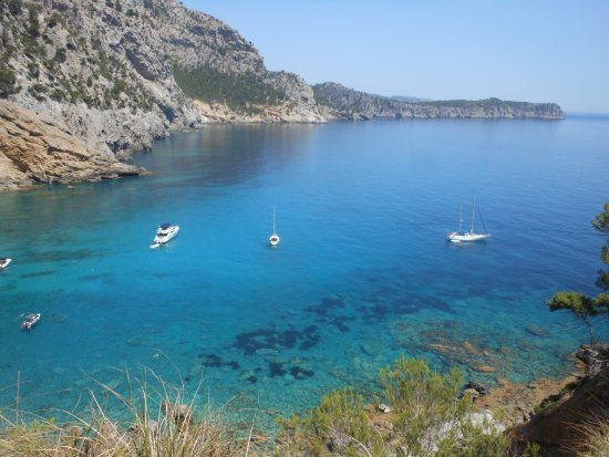 Playa Coll Baix - Foto di Playa Coll Baix, Alcúdia - TripAdvisor
