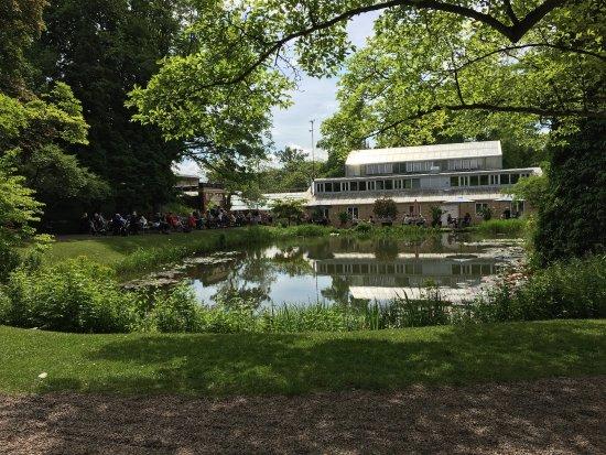 Botanical Gardens (Botaniska Tradgarden): photo0.jpg