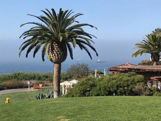 Goleta, CA: Resort grounds above patio restaurant