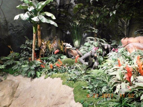 Diorama Picture Of Creation Museum Petersburg Tripadvisor
