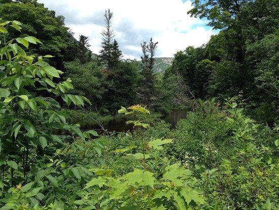 Hart's Location, Nueva Hampshire: photo4.jpg