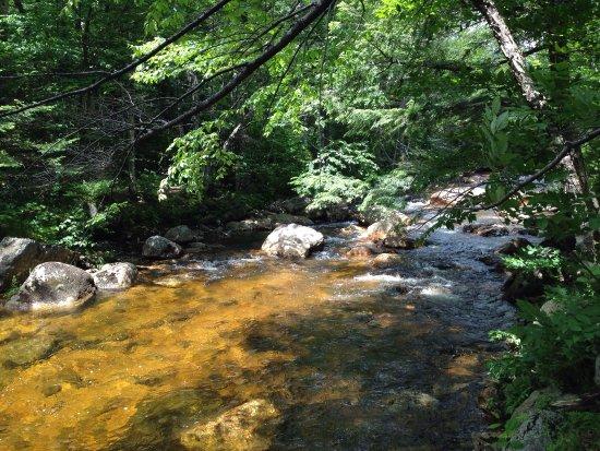 Hart's Location, Nueva Hampshire: photo5.jpg