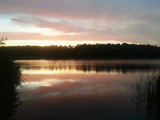 frensham sunset