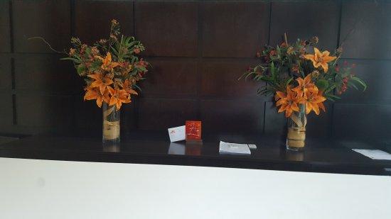 Puerto Mercado Hotel: 20170324_173832_large.jpg