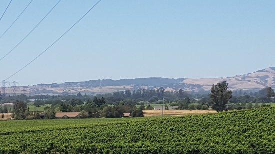 Sterling Vineyards: 20170619_130233_large.jpg