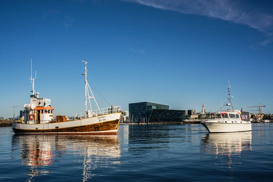 Reykjavik by Boat
