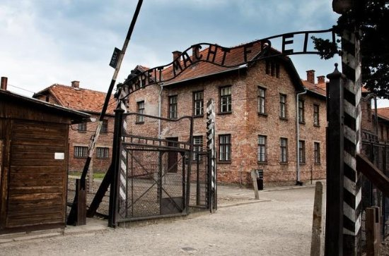 Full-Day Tour to Auschwitz-Birkenau and Wieliczka Salt Mine from...