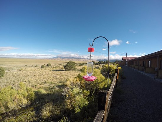 Great Sand Dunes Lodge: View from the walk out patio to the dunes.