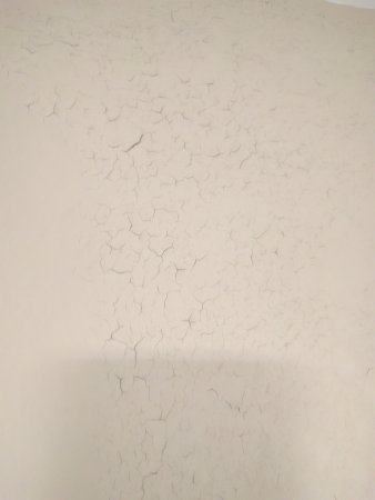 Quality Inn & Suites Moline – Quad Cities: Peeling paint