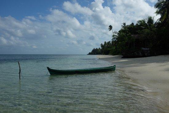 Wakatobi Hoga Diving: Plage de l'hotel