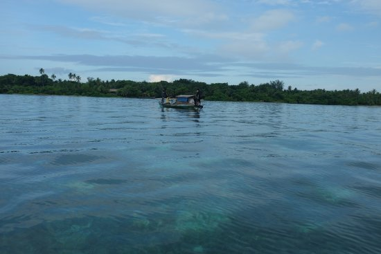 Au large de Hoga island