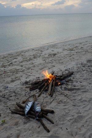 Hoga Island, Ινδονησία: 2 thons cuits au feu de bois sur la plage de l'hotel pour notre dernier jour.