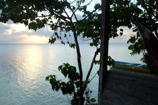 Hoga Island, Indonésia: Vue d'un hamac de l'hotel