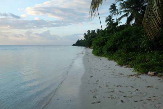 Wakatobi Hoga Diving: vue sur la droite de l'hotel