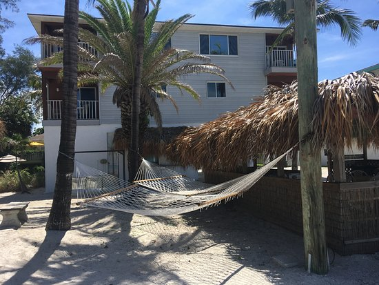 cedar island single parents Gulf breeze real estate single family a undeveloped canal lot with entry way to the gulf and an inland lot for family take beach rd to cedar island.