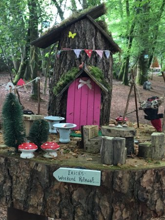 Erica's Fairy Forest Photo