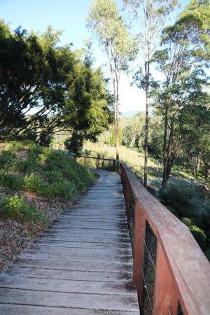 Clear Mountain, Austrália: Pathway to vineyard