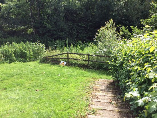 Cleobury Mortimer, UK: Perfect garden for dogs