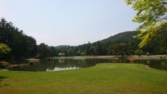 Motsu-ji Temple: DSC_3603_large.jpg