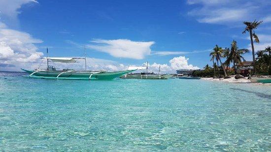 Ocean Vida Beach & Dive Resort: Views from ocean vida