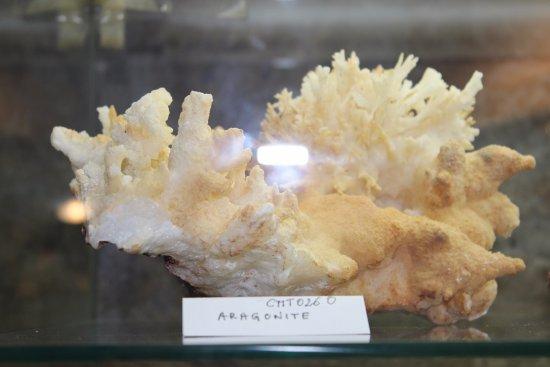 Campiglia Marittima, Italy: Museo del Minerale, aragonite