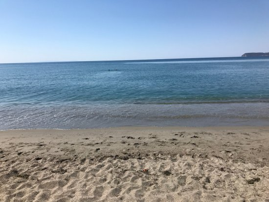 Mavrovouni Beach : Clear water