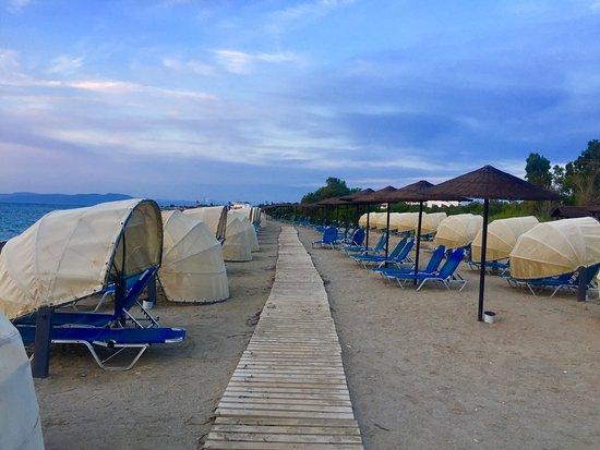 Kipriotis Panorama Hotel & Suites: Пляж и лежаки- ракушки