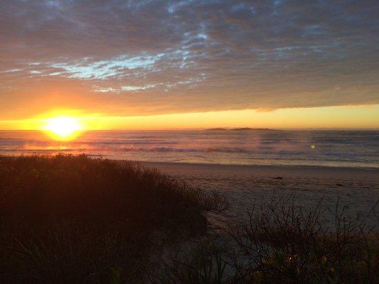 Narooma, Australia: Beach on the doorstep of this park