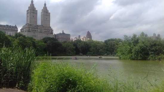 The Westin New York Grand Central: Central Park Lake
