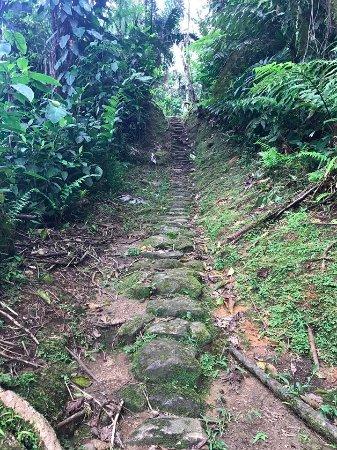 Santa Marta District, Colombia: Escalones hacia la Ciudad Perdida