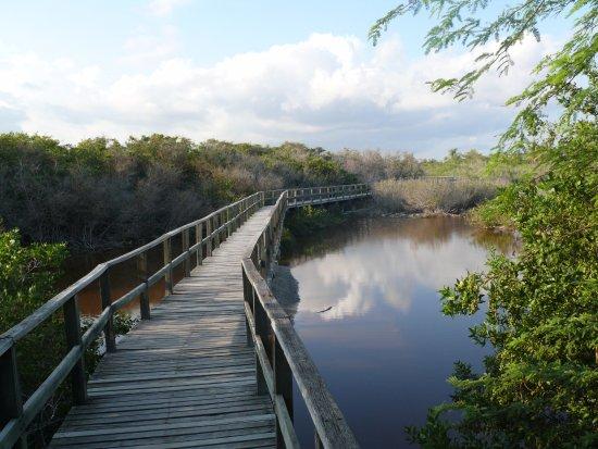 Concha de Perla: Un lugar de paz y cercanía a la naturaleza.
