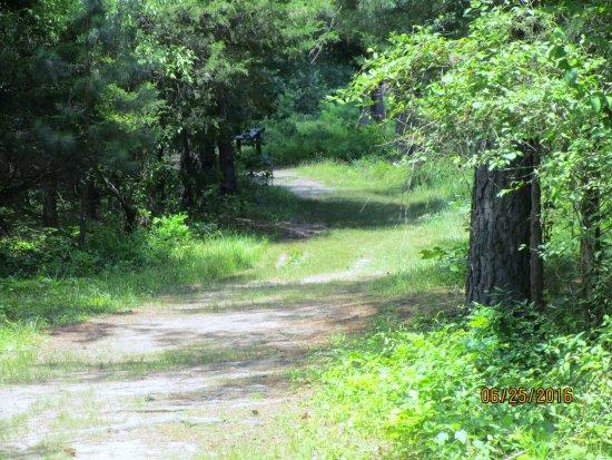 Deep Cut Loop Trail