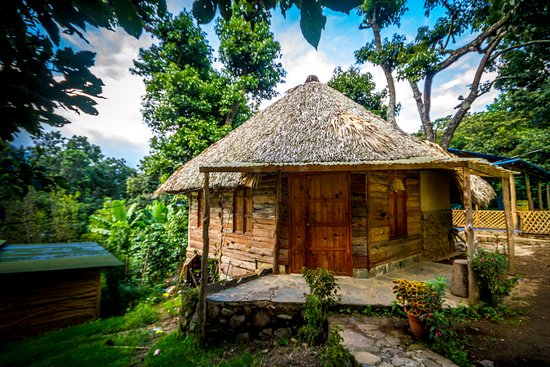 "Eco Hotel MayAchik: ""outside view of Bungalow Colibri"""