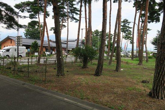 Matsukawa-mura, Japón: 松の木が印象的です。