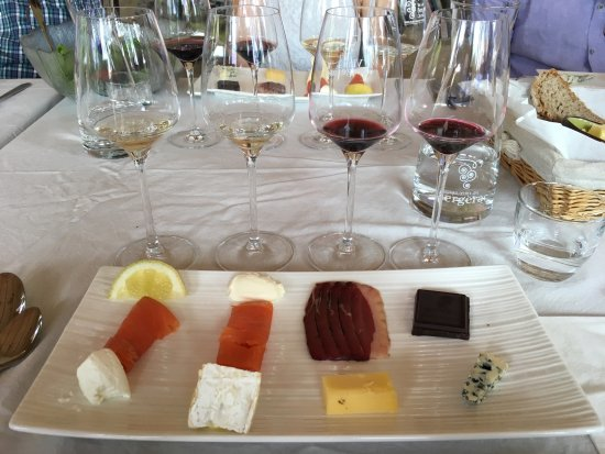Saussignac, Frankrike: Wine tasting (wine provided was unlimited!)