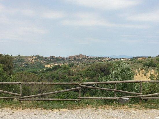 Castelmuzio Picture